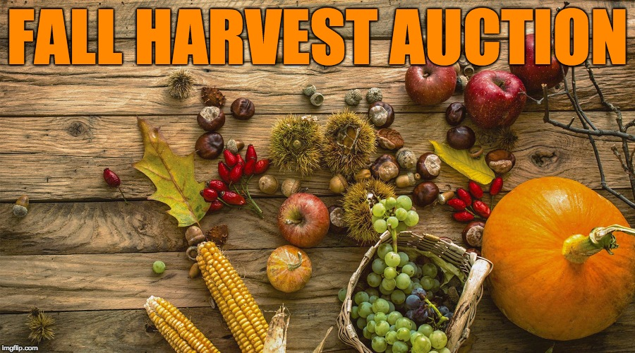 FALL HARVEST AUCTION MEME